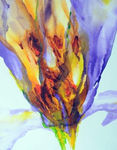 Blüte Lilie